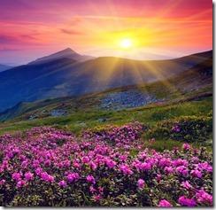 sun-shining-over-hills-1920x1200-wallpaper-amanecer-en-las-colinas-y-montac3b1as (2)